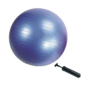 exercise ball Aleko